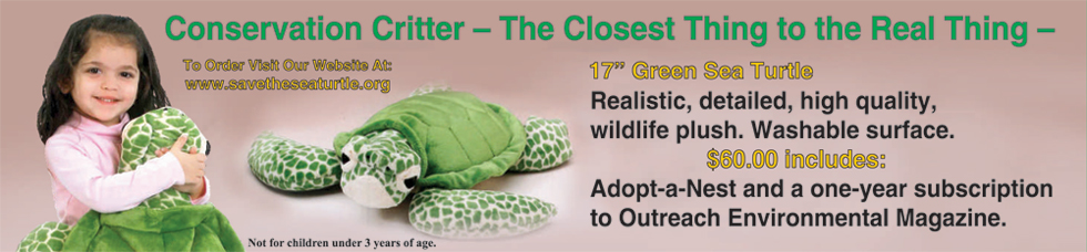 Sea turtle wildlife plush